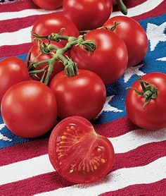I would love a  Fourth Of July Hybrid Tomato Seeds 30 Pack - Organic (Non-GMO) by OrganicSeedSupply / http://www.holidaygoodness.com/fourth-of-july-hybrid-tomato-seeds-30-pack-organic-non-gmo-by-organicseedsupply-2/
