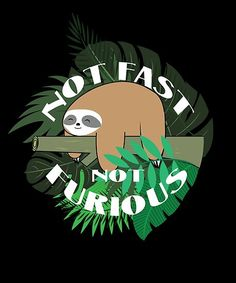 'Not fast not furious cute lazy sloth' by handcraftline Framed Prints, Canvas Prints, Art Prints, Sloths, Long Hoodie, Wood Print, Decorative Throw Pillows, Art Boards, Lazy