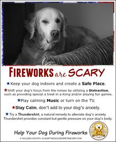 Fireworks are Scary Infographic