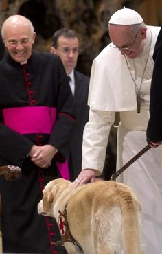 Papa Francesco accarezza il labrador