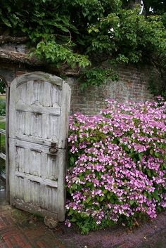 a well-weathered door in Somerset, England
