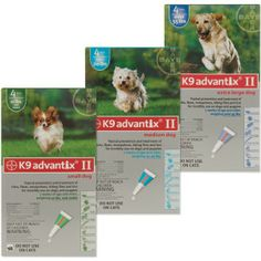 Cat Flea Medicine Petsmart