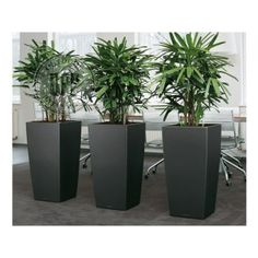 Very large garden pots and planters large pots for outdoor plants extra. Large Garden Pots, Large Plant Pots, Large Planters, Black Planters, Modern Planters, Decoration Cactus, Decoration Plante, Potted Plants, Indoor Plants