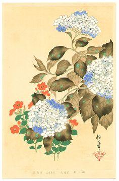 Sakai Hoitsu: Hydrangea - Rimpa School Series