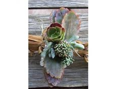 Organic Succulent Wedding Corsage | $15 | Green Bride Guide
