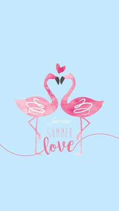 Flamingo - Techno World Flamingo Wallpaper, Lit Wallpaper, Phone Wallpaper Quotes, Summer Wallpaper, Pink Wallpaper Iphone, Trendy Wallpaper, Disney Wallpaper, Mobile Wallpaper, Cute Wallpapers
