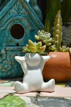 Mini Succulent People Planters - doable with air-dried clay