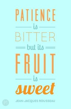 Patience is bitter but its fruit is sweet! Food for thought for your New Year Social Media campaign.