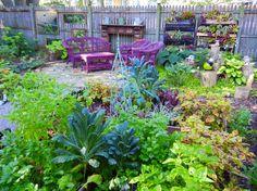 Shade Garden Vegetables-Arugula, Basil, Beans (lower production for beans), Celery, Collard greens,  Corn Maiche, Cucumbers, Herbs (i.e. chives, cilantro, lemon balm, mint, oregano, parsley, scallions), Kale,  Lettuces, Mustard Greens, Pak Choi, Peas (lower production for peas), Radishes (small radishes), Rhubarb, Spinach, Swiss Chard, Turnip Greens