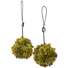 "7"" Mixed Succulent Hanging Spheres (Set of 2.)  Two is always better than one. So with that in mind, we've doubled the beauty with these mixed succulent spheres. These small ""explosions of color"" are just the right size for hanging anywhere. The interesting succulent blooms combine with faux berries making for a unique look that appears different on every viewing. And because they'll stay beautiful forever, they make a great gift for that hard to buy for person. #succulents"