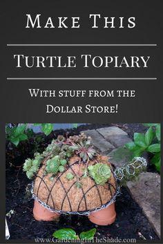 A Succulent Turtle Topiary Succulent Planter Diy, Succulent Gardening, Diy Planters, Succulents Garden, Container Gardening, Gardening Tips, Indoor Gardening, Hanging Planters, Organic Gardening