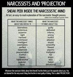 Narcissistic mind...