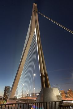 Erasmus bridge, Rotterdam Cable Stayed Bridge, Eindhoven, Delft, Rotterdam, Golden Gate Bridge, Nice View, Netherlands, Holland, The Good Place