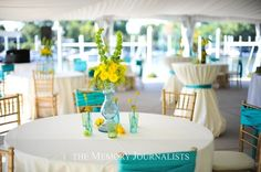 Little Bird Celebrations Party Ideas, Party Supplies and Party Decorations: Aqua and Yellow Wedding