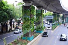 Via Verde no México: jardins verticais urbanos
