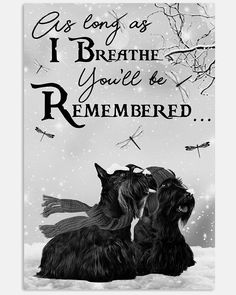 Missing You So Much, Love You, We Missed You, Pet Loss, Think Of Me, Rest In Peace, Scottie, Thinking Of You, Loss Of Pet