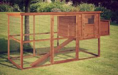 Our Large Starter Chicken Coop is perfect for your chickens. For as little as you can have a well built chicken coop for your chickens. Chicken Coop Large, Chicken Coops, Anniversary Quotes, Home Decor, Chicken Pen, Hens, Birthday Quotes, Chicken Coop Run, Interior Design