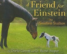 After searching for a new friend, Einstein, a very small horse, finds the perfect companion in a white boxer named Lilly.  (ER Nature Cantrell; Pre-K - 2nd grade)