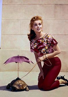 Ann-Margret: actress, singer, dancer, protector of tortoises…