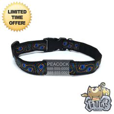 Happy Pet Collar  Peacock Peafowl Personalized Dog Collar