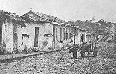 Fotografía antigua Algunas fotografías tomadas a finales del siglo XIX y principios del siglo XX son ahora un reflejo muy importante del boyeo en la Costa Rica de aquellos años. Este boyero transita por la actual Avenida Central.