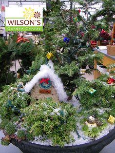 Fairy Garden for wintertime :-)