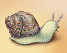 10 x 8 - Colorful Snail -  Archival Wall Art Print of Original Illustration - Nature, animal, rainbow, shell, slug, science, stripes