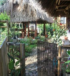Integral Permaculture Farm ~ Organic & alternative construction Belize - $35 dorm style visit, pay extra for vegan/vegetarian meals and yoga