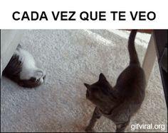 Amor - GifsGamers.com || La mejor web hispana sobre gifs