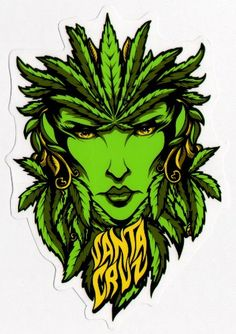 Amazon.com: Santa Cruz Weed Goddess Skateboard Sticker
