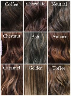 Shades of Brunette @milenashairdesign #hairinspiration #chocolatehair #coffeehair #ashbrownhair #chestnuthair #auburnhair #toffeehair #go… Brunette Hair Color,