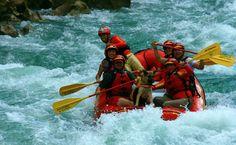 Tres experiencias llenas de emoción, entre cascadas furiosas y ríos teñidos de azul turquesa, en compañía de tu mascota