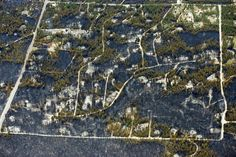 images of  blackforest fire | ... Pictures From Colorado Black Forest Fire Show Incredible Destruction