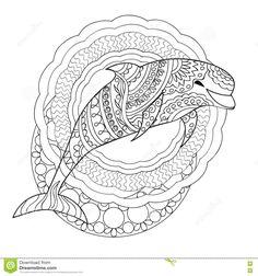 342 beste afbeeldingen coloring dolphin whale shark