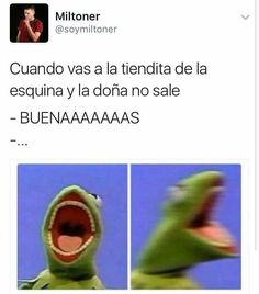 Read CAPÍTULO from the story Adoptada Por by (H U M A N 1 0 with reads. Funny Spanish Memes, Spanish Humor, Funny Images, Funny Pictures, Cute Christmas Wallpaper, Mood Songs, New Memes, Just Kidding, Love Words