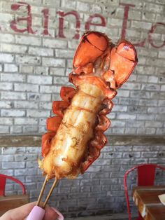 North Georgia Highlands Seafood Festival Highlands, Seafood, Georgia, Eat, Kitchens, Sea Food, Scottish Highlands