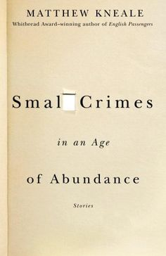 small_crimes_in_an_age_of_abundance.large