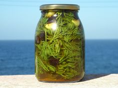 Pickled Sea Fennel, fresh garlic, Passito raisins, Passito vinegar. Flourish & Nourish in #Pantelleria ( between #Sicily & #Tunisia ) #NYC Chef & a #Chiropractor blog - #Wild sea #fennel contains a array of #organic solutes, #anitoxidant compounds, #vitamin C, #flavonoids, #carotenoids & tetraterpenes, monoterpenes, sesquiterpenes & amines. Experiments with human intestinal cells demonstrated that both falcarinol & falcarindiol provide potent #anticancer & #anti-inflammatory enzymatic…