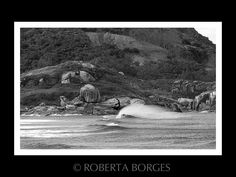 Terral Barrinha Barra-Garopaba /SC  Brasil waves,beach,Barrinha Fotografia Fine Art, Surf, Brazil, Beach, Nature, Painting, Naturaleza, Surfing, The Beach