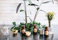 T Totaler Tea Store Opens on King Street, Newtown with Artisan Tea | Broadsheet Sydney - Broadsheet
