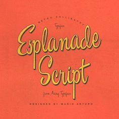 Esplanade Script Font | dafont.com- script but playful, STD or signs