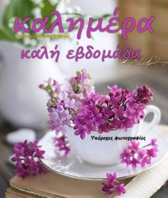 Good Morning, Party, Buen Dia, Bonjour, Parties, Good Morning Wishes