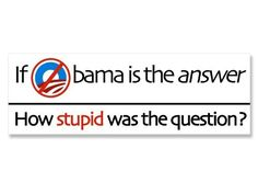 If Obama is the Answer How Stupid was the Question