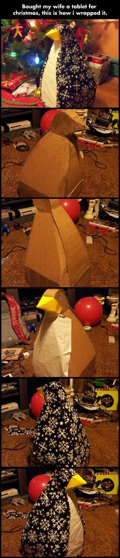 Penguin wrapped…