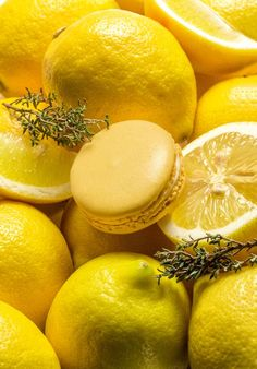 Rezept: Zitrone-Thymian-Macarons-amicella