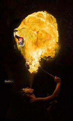 Bir cok tasarim ve grafik sitesinde en iyi tasarimlar arasinda yer alan 'Fire Lion ve 'Fire Turk calismalarim.