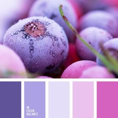 Bedroom Colors Purple, Bedroom Colour Palette, Colour Pallette, Purple Bedrooms, Design Seeds, Color Schemes Colour Palettes, Color Combos, Kitchen Color Palettes, Pantone