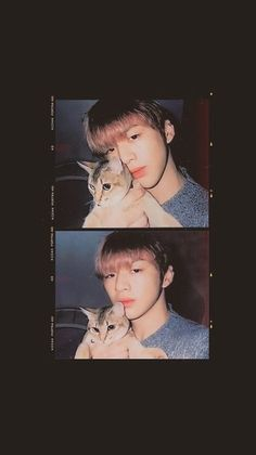 Idk what band this guys from but omg the cat is so adorable! Kang Daniel Produce 101, Kpop, Daniel K, Prince Daniel, Lai Guanlin, Ong Seongwoo, K Idol, 3 In One, Boyfriend Material