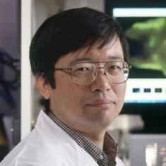 Hisataka  Kobayashi, M.D., Ph.D. - Cancer research