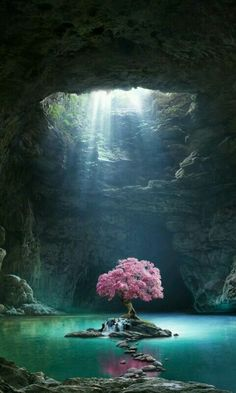 Pink tree blossom cave lake nature 480800 wallpaper The post Pink tree blossom cave lake nature 480800 wallpaper appeared first on Hintergrundbilder. Landscape Art, Landscape Photography, Nature Photography, Photography Jobs, Nature Pictures, Cool Pictures, Beautiful Pictures, Beautiful Photos Of Nature, Scenery Pictures